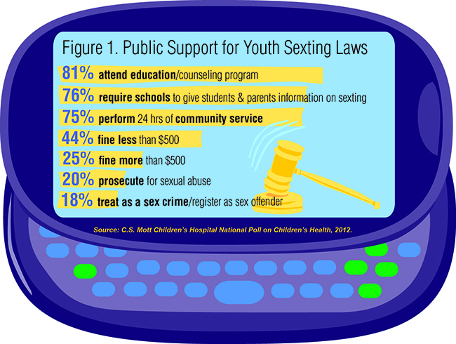 Figure 1. Public Support for Youth Sexting Laws
