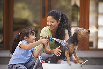 Mom and daughter washing dog