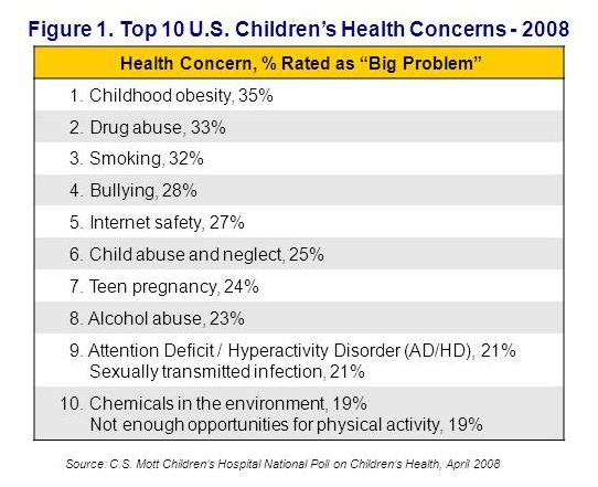 Top 10 U.S. children's health concerns - 2008