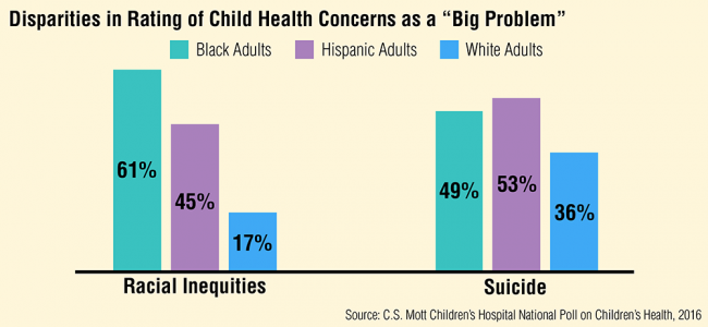"Disparities in rating of child health concerns as a ""big problem"""