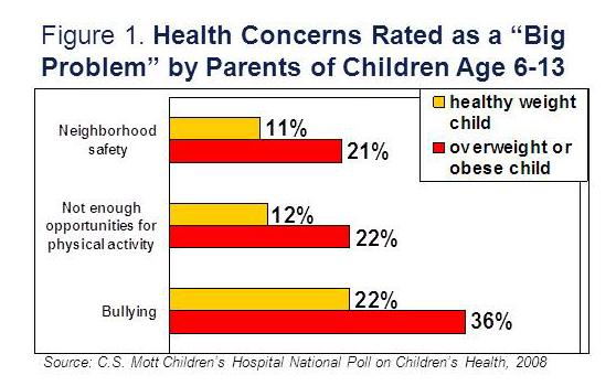 "Health concerns rated as a ""big problem"" by parents of children age 6-13"