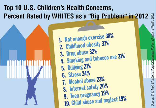 "Top 10 U.S. Children's Health Concerns, Percent Rated by Whites as a ""Big Problem"" in 2012"